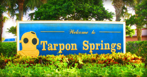 Tarpon Springs Home Inspections